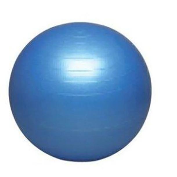 バランスボール(55cm)